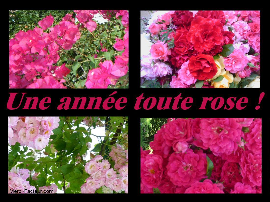 carte de voeux gratuite une année toute en ROSE