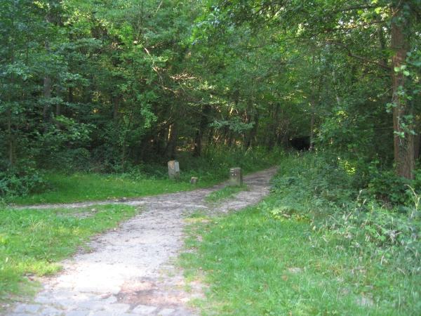 chemin Jean Racine parc naturel régionnal de la vallée de chevreuse
