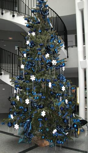grand sapin de Noel bleu pour carte de Noel.