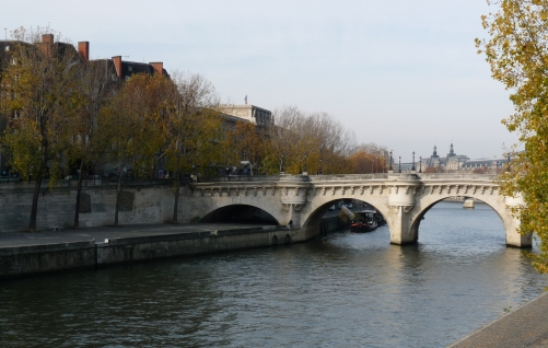 Rives de la Seine à Paris France